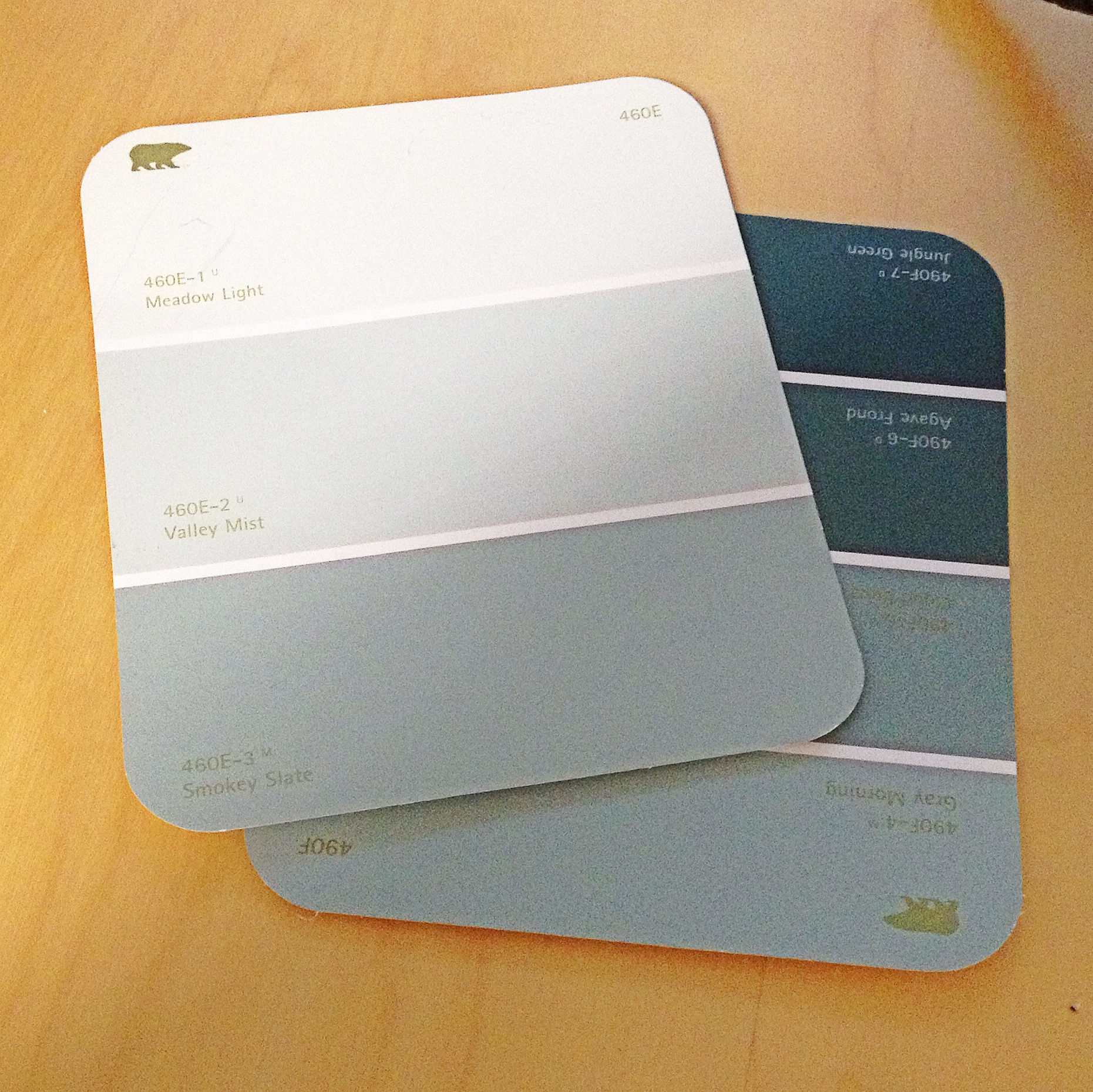 Behr Paint Selection
