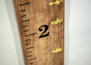 Little Acorns by Ro Etsy Growth Chart